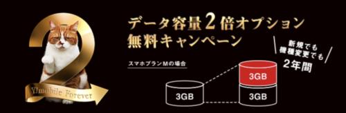 データ2倍容量無料